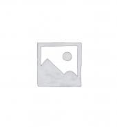 PEELED GARLIC(1KG)